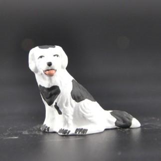 chien tacheté noir
