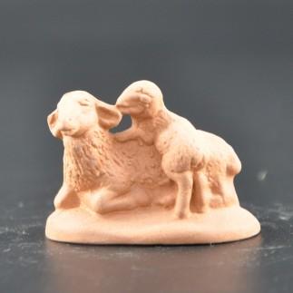 Mouton et agneau brut